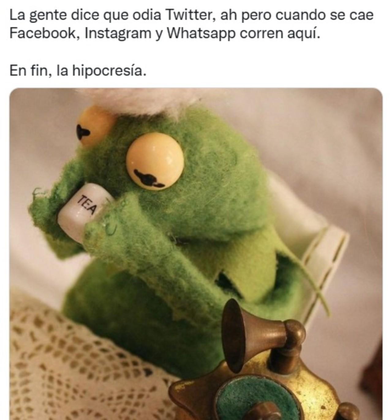 rana rene caida whatsapp facebook instagram