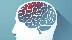 sağlıklı beyin