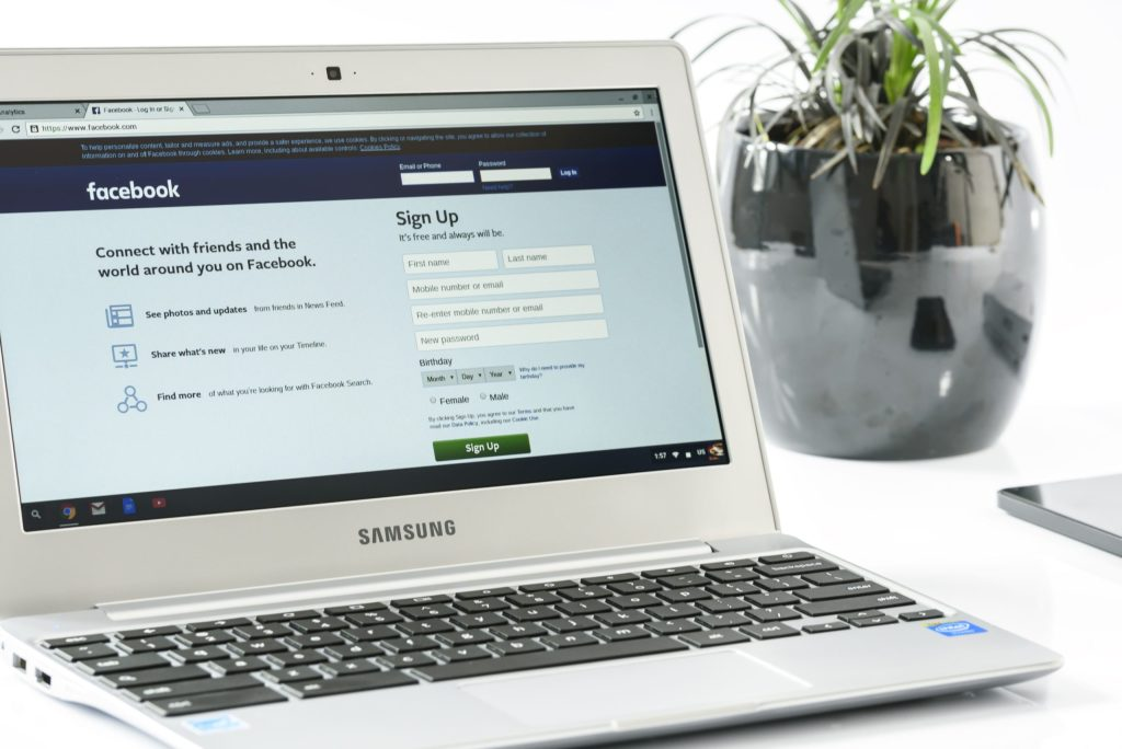 laptop on facebook.com sitting next to a plant