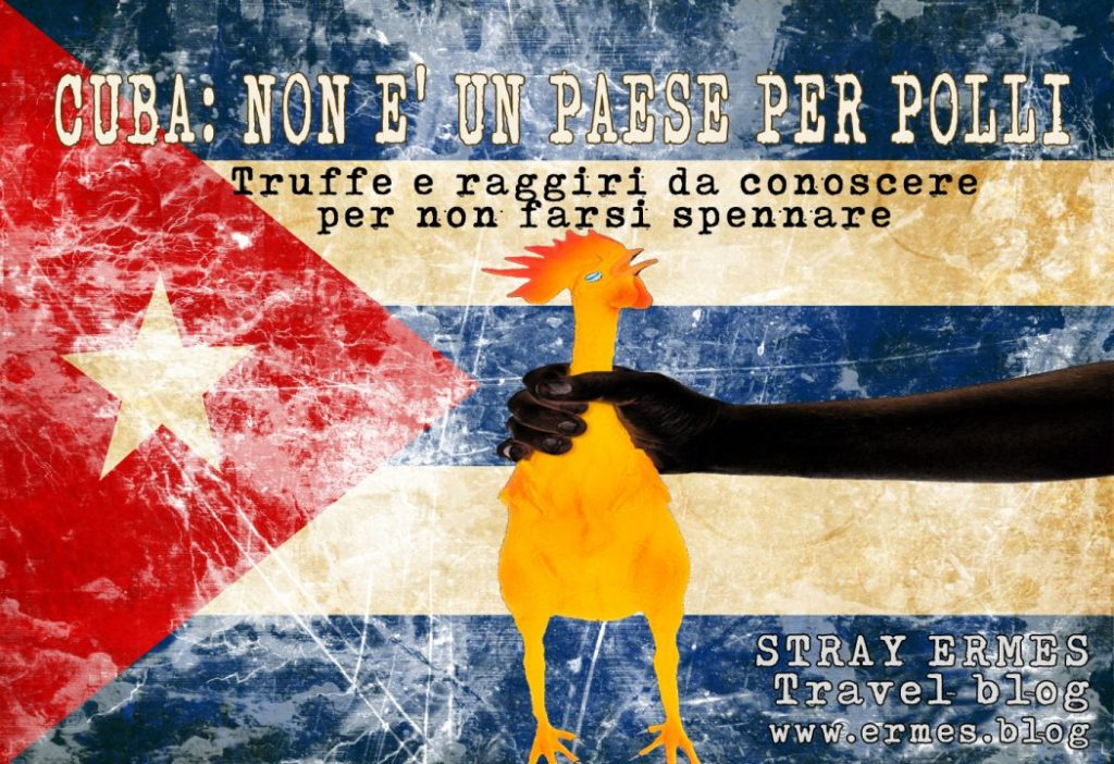 Cuba: non è un paese per polli - STRAY ERMES