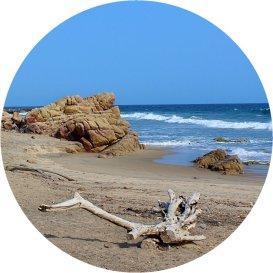playa ventura Guerrero