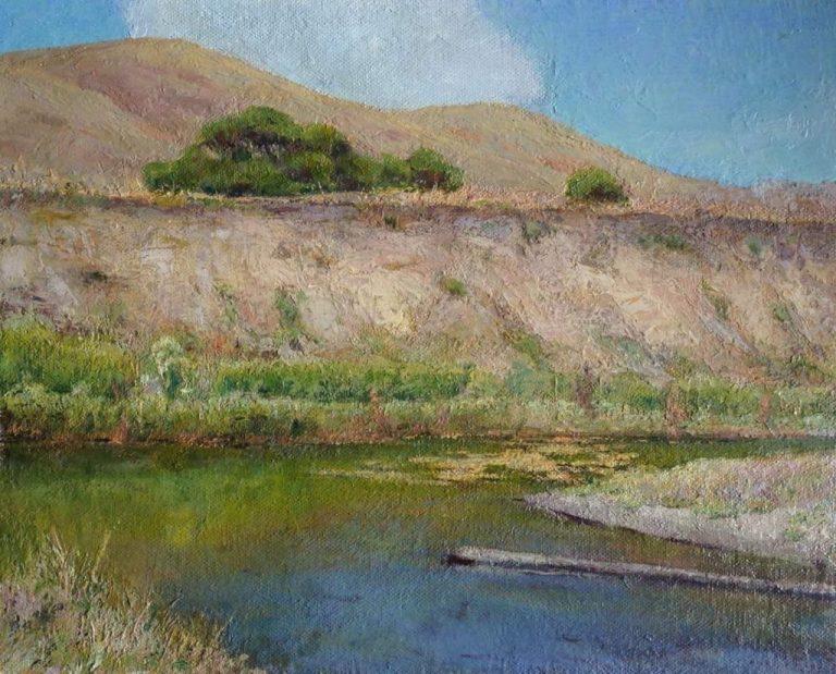 Estero Bluff