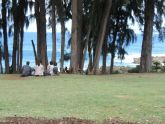 After the park was cleared, one family came to enjoy lunch at the park.