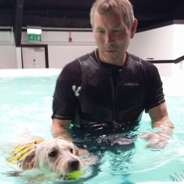 Ernie with Jim at Completey K9 in Canvey