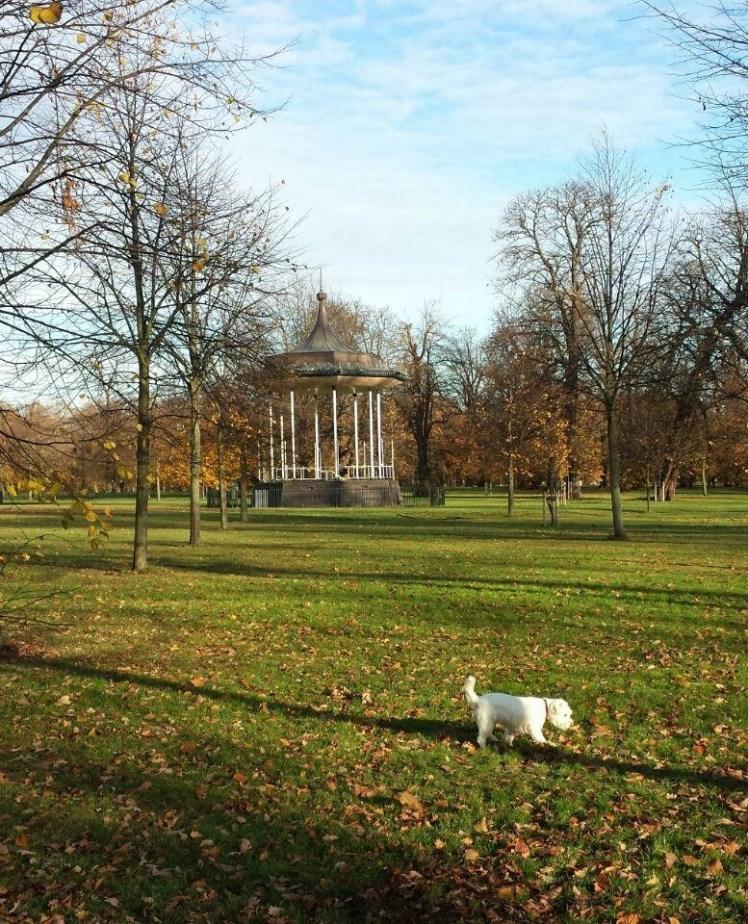 Ernie in Kensington Gardens