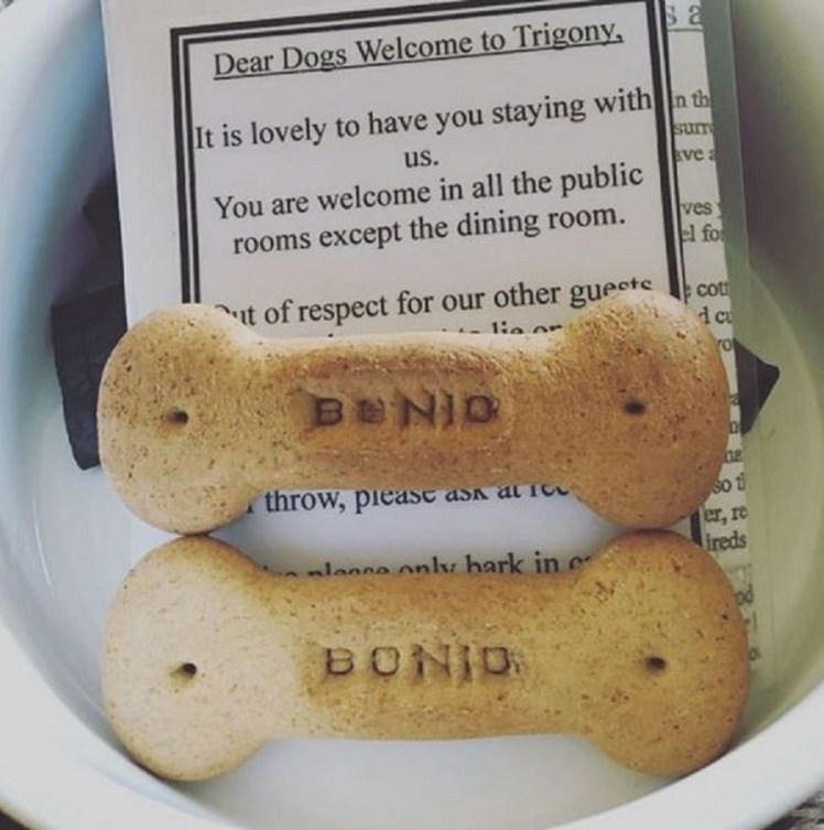 Bonios and welcome pack for dogs at Trigony House