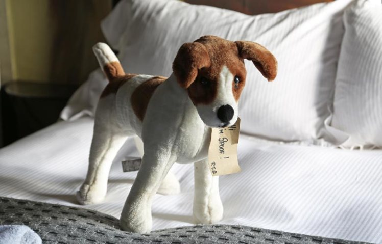 Soft toy of Spoof the dog at the King's Arms, Didmarton