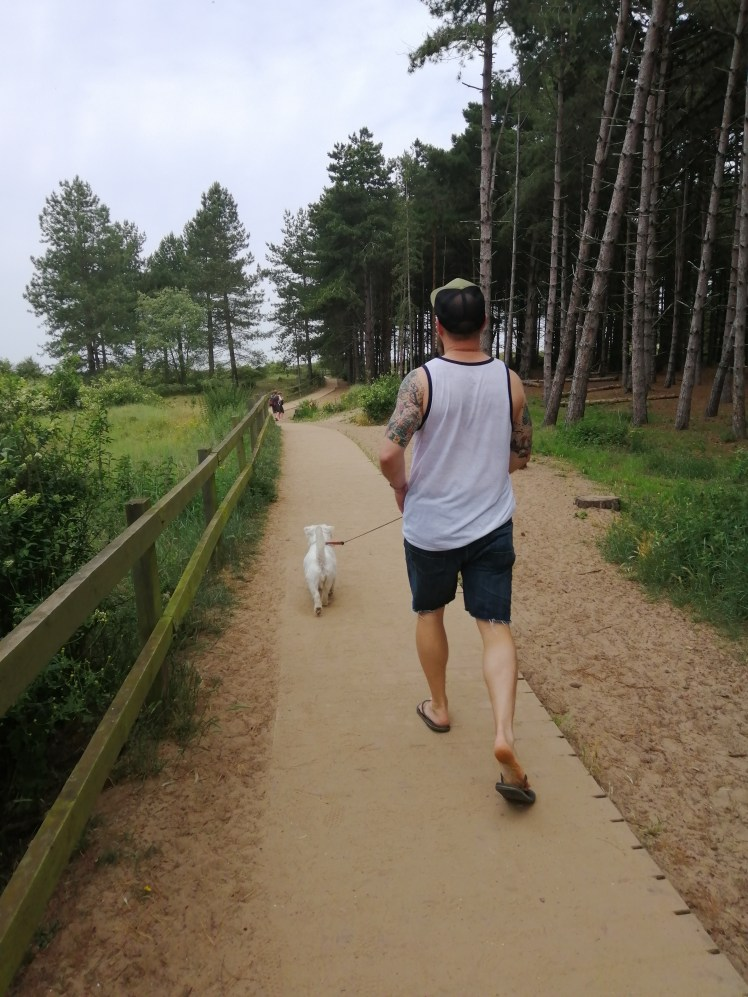 Nick and Ernie walk through the pines to Holkham Beach
