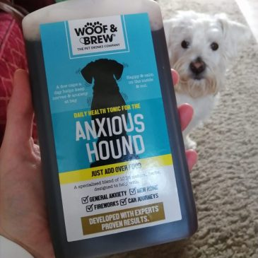 Ernie with a bottle of Anxious Hound from Woof & Brew