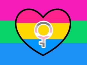 polysexual, panromantic, demigirl