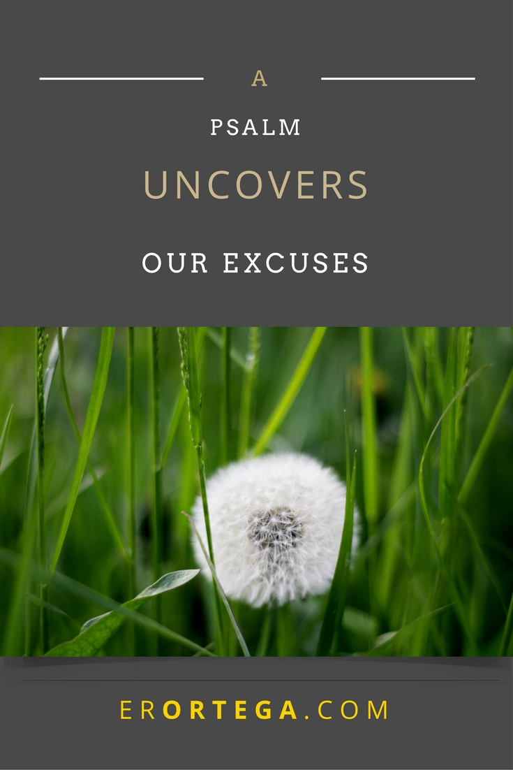 Only God can provide the infusion of strength we need to press forward. A Psalm reveals how we don't need to make excuses for sorrow and discouragement. Click to read full post.