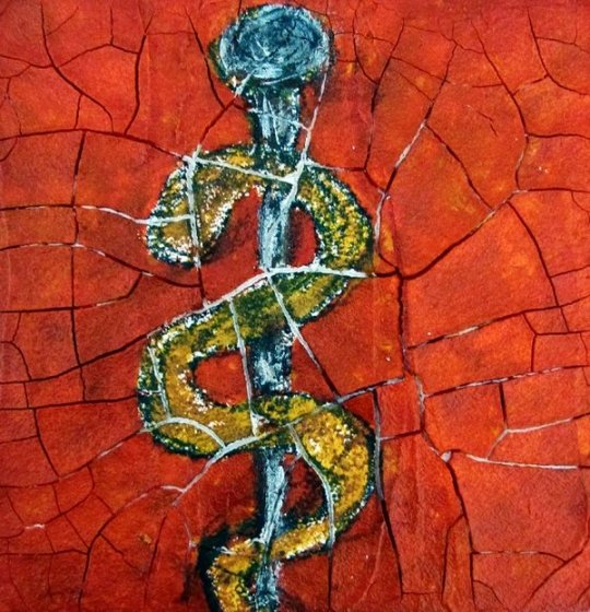 rod-of-asclepius-jeanne-wood (1)