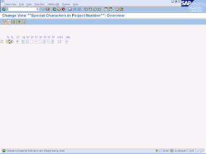 sap-ps-config-opsk-define-special-characters-for-project