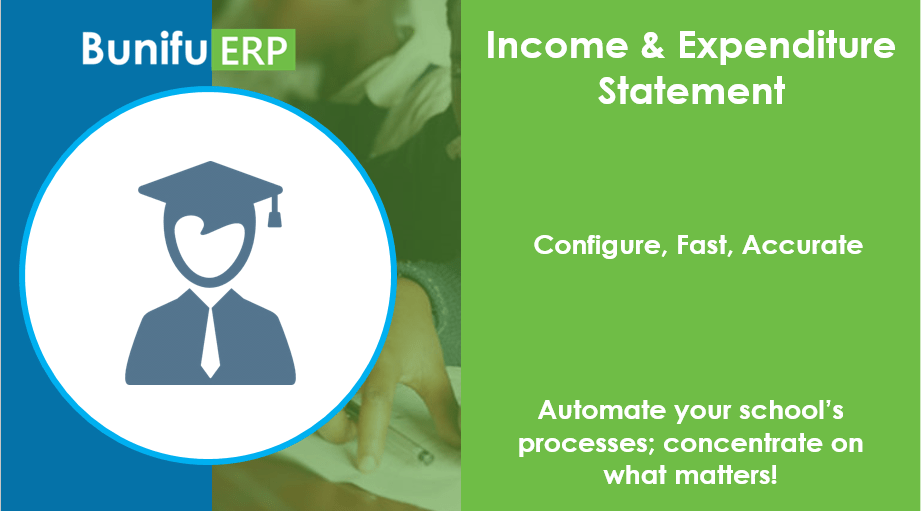 Bunifu ERP income and expenditure statement