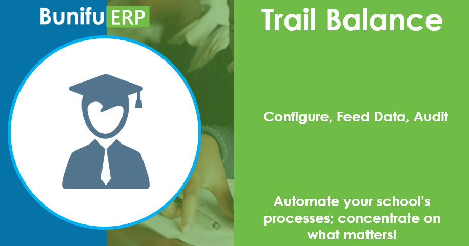 Bunifu ERP for schools and colleges trial balance