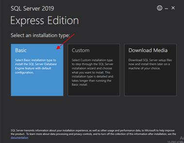 Sql Server Edition Basic