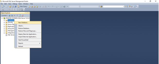 sql newdatabase