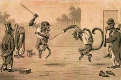 Monkey Duel 1