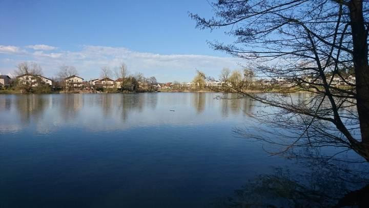 The pond of Koseze