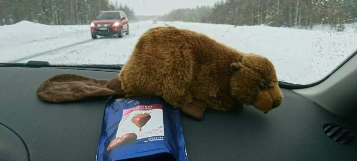 My Finnish candy haul
