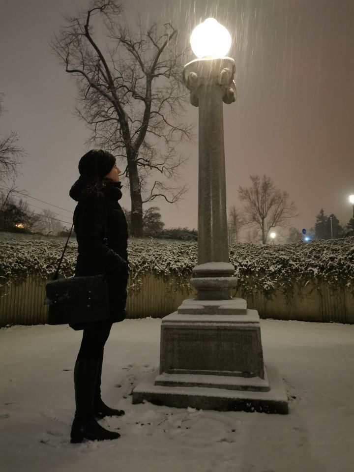 First snow in Christmas Ljubljana 2019