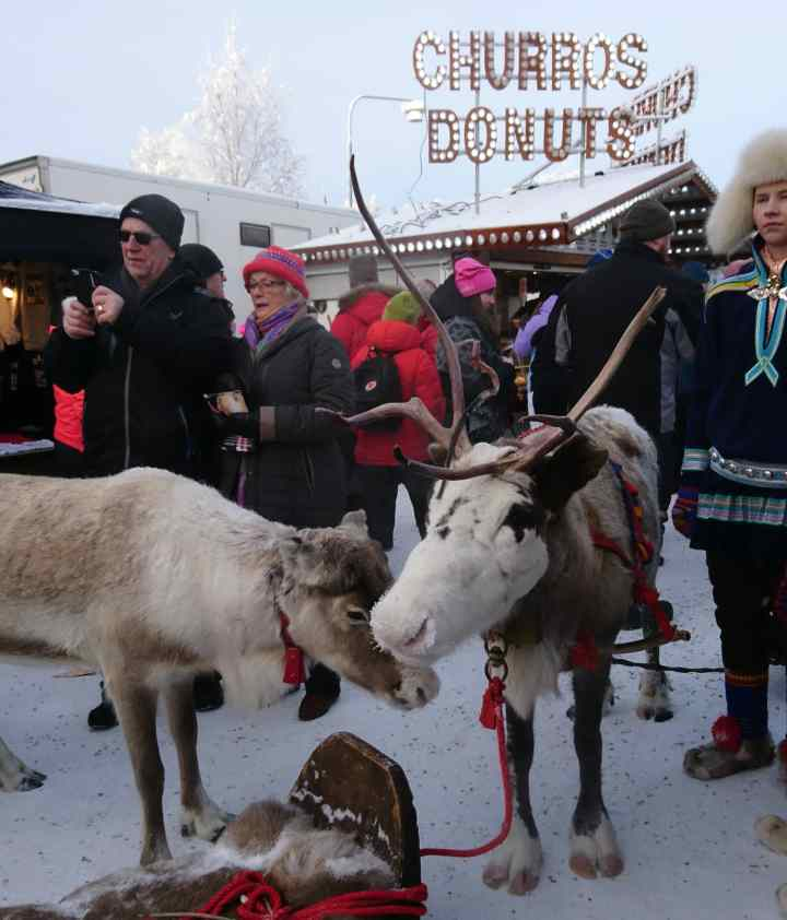 Jokkmokk (Winter market 2019)