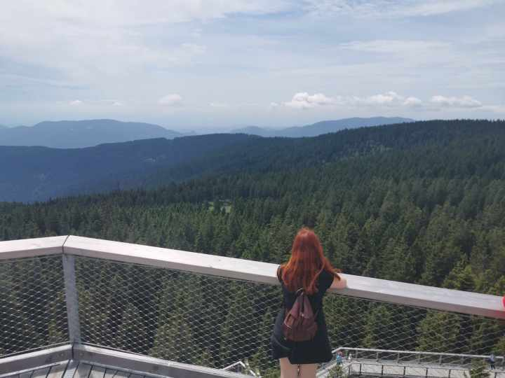 Treetop walk in Rogla