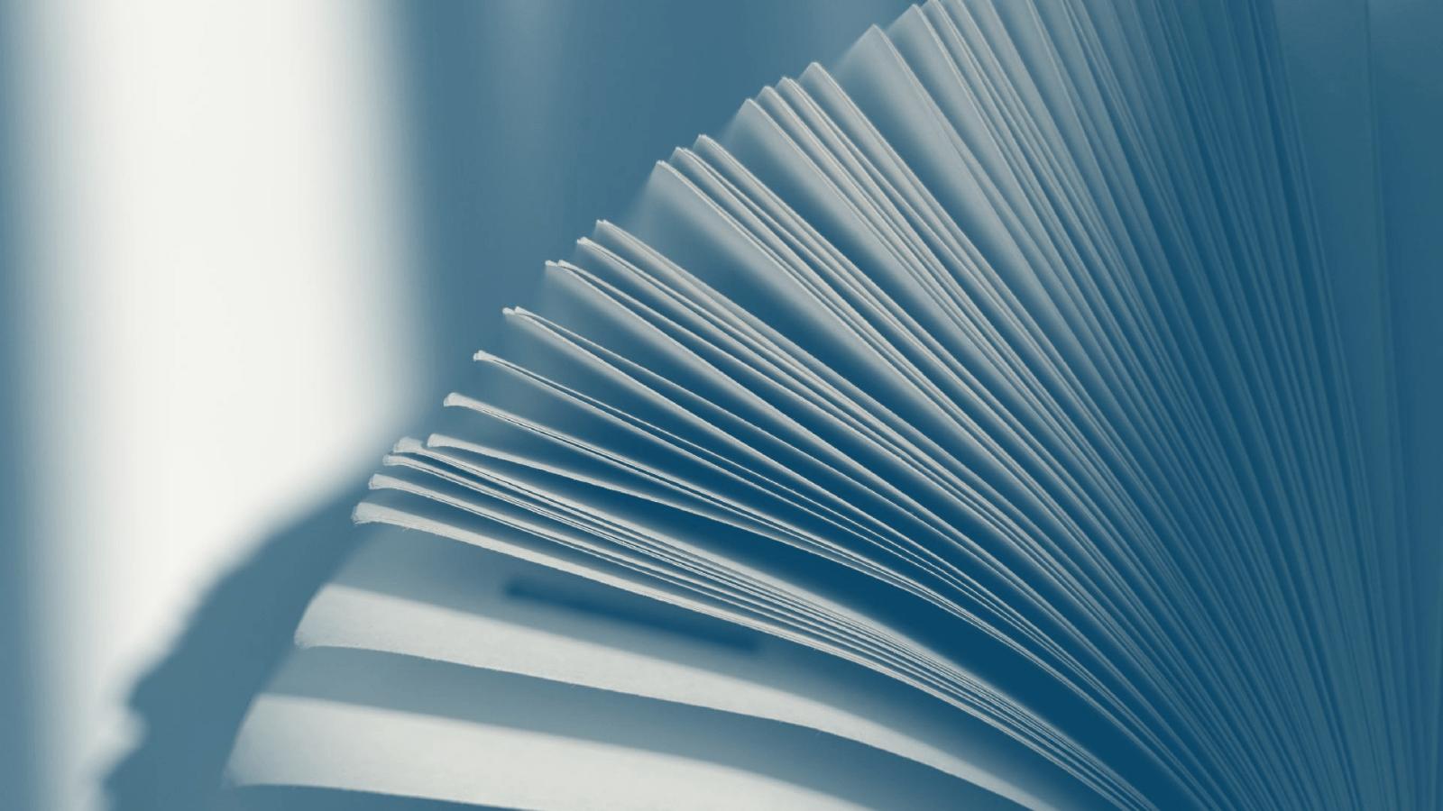 Erraticus Essays Academia Students Student Submissions Essays
