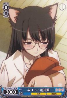 Cat Ears, Tsubasa Hanekawa