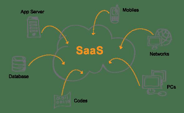 SaaS Web App