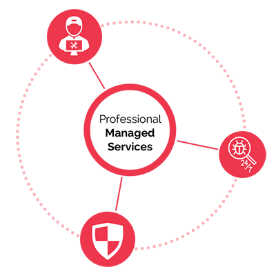 Professional Managed Services