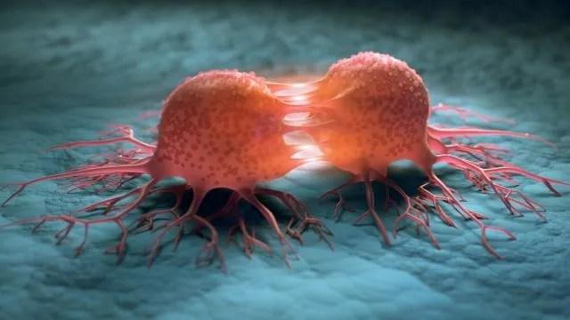 kanserden korunmanın yolları nelerdir? hangi besinler kanserden korur?
