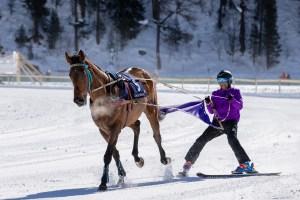 Esteratsastuksesta raveihin – Suomessa hevostelu on iso juttu