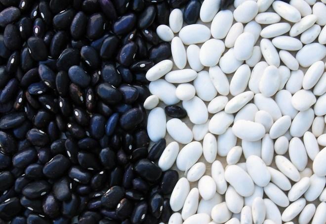 beans-799943_1920