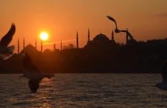 Istanbul (144)