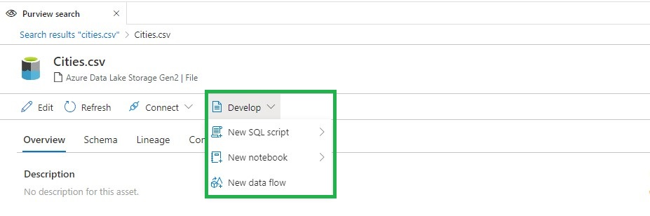 Azure Purview Integration Develop