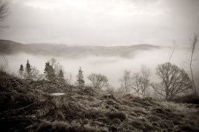 Mist on Gallow Hill, Moffat, by Eryl Shields