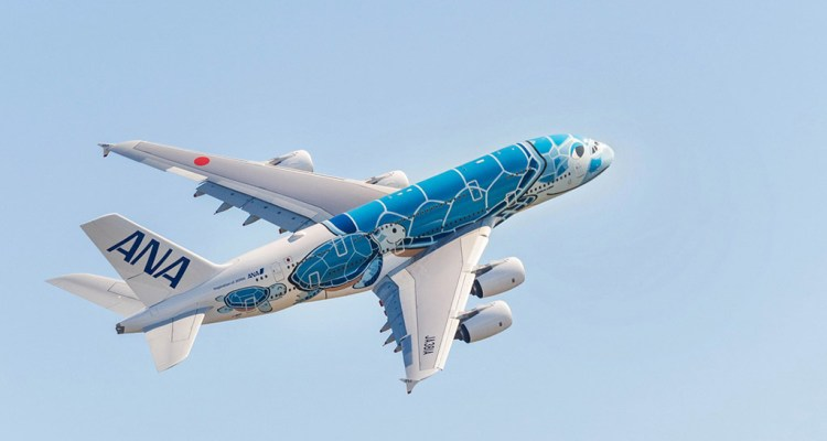 First All Nippon Airways Airbus A380 in flight