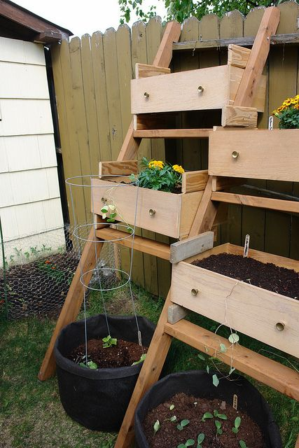 Wood Box Garden Diy