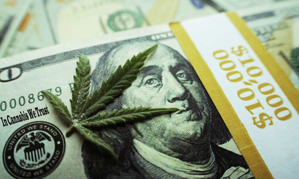 What New Investors Should Know About Buying Cannabis Stocks