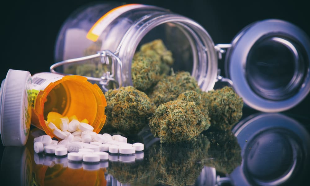 New Study Brings Skepticism to Idea That Legal Marijuana Reduces Opioid Deaths