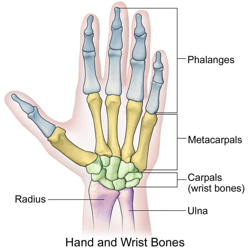 Sobre la la mano dolor muñeca en
