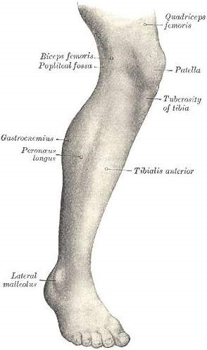 dolor parte anterior rodilla ciclismo