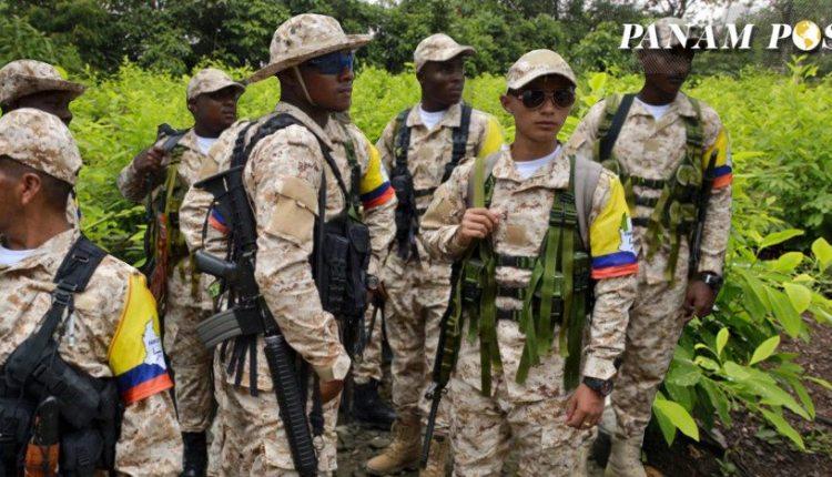 FARC Coca