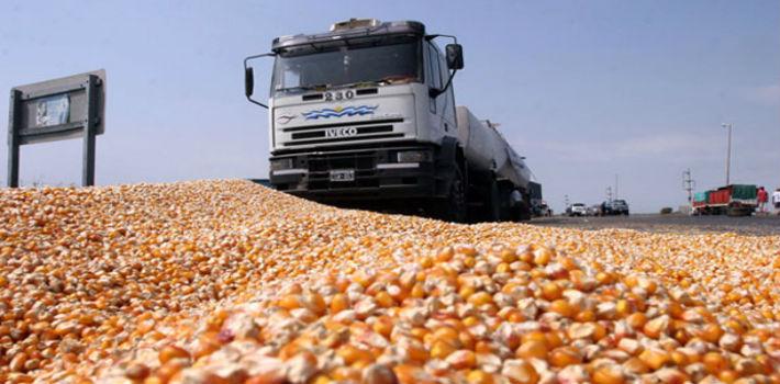 granos-transportistas
