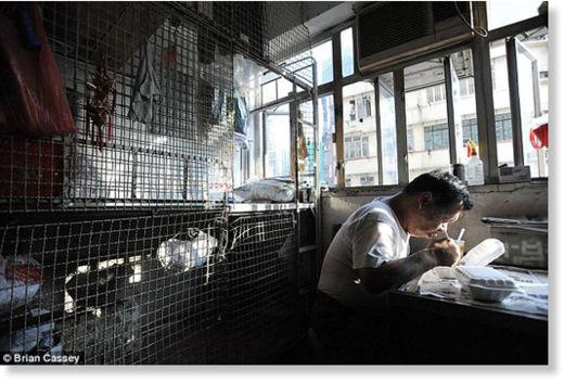 Hong Kong viven en jaulas2