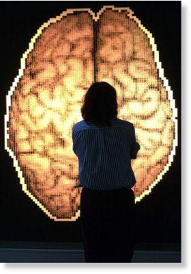 Mapa del cerebro