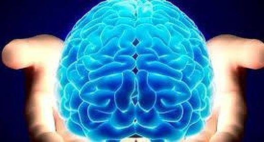 cerebro en las manos