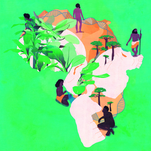 evolución humana África