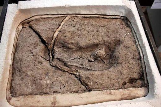 huella del Pleistoceno, América